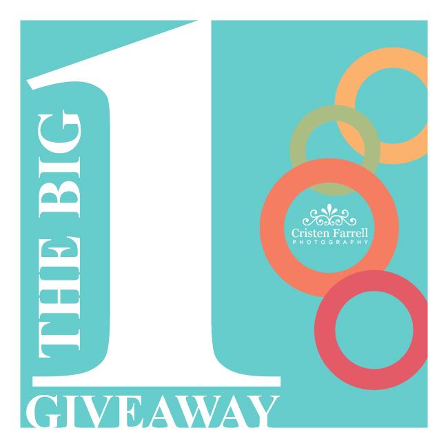 The Big 1 Giveaway: VOTE NOW!   Santa Clarita Photographer (1/5)
